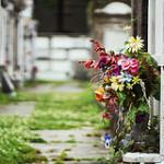 Headstone Supplier in Waterloo